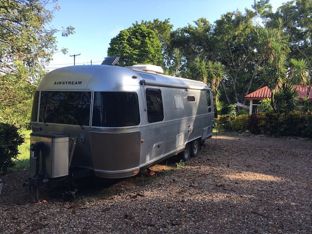 Airstream in the jungle - San Antonio - Karavan