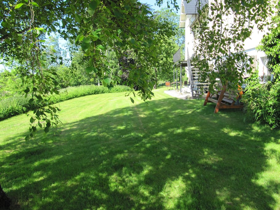 Trädgårdens södra gräsmatta.