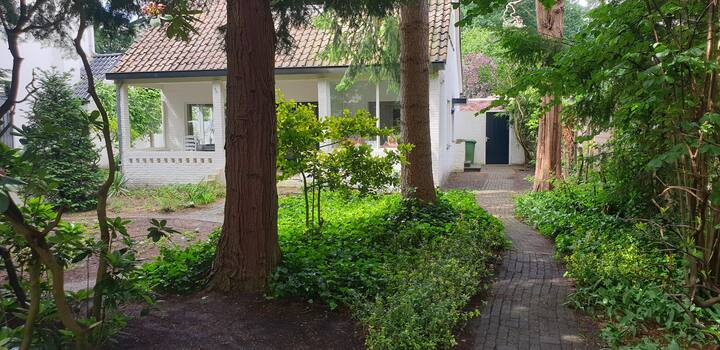 Charming family villa with pool near Utrecht