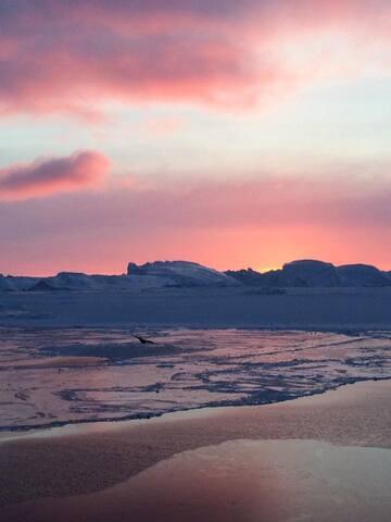 Værelse i villa på kanten af Isfjorden