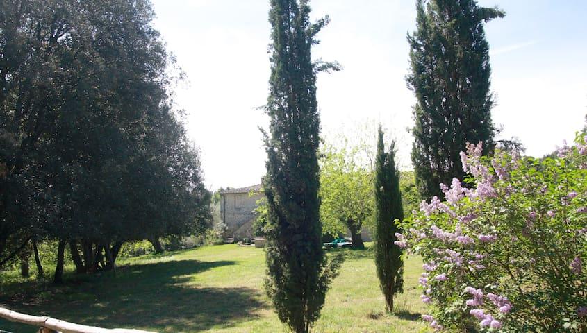 Agriturismo Tra Cielo e Terra - Siena - Lägenhet