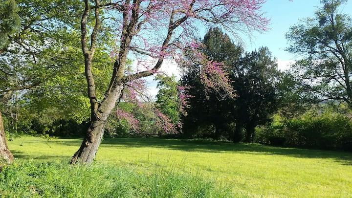 Chambre dans charmante maison - grand jardin