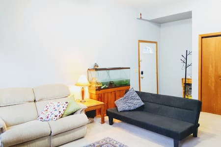 Bright and Cozy apartment just off Monona Bay