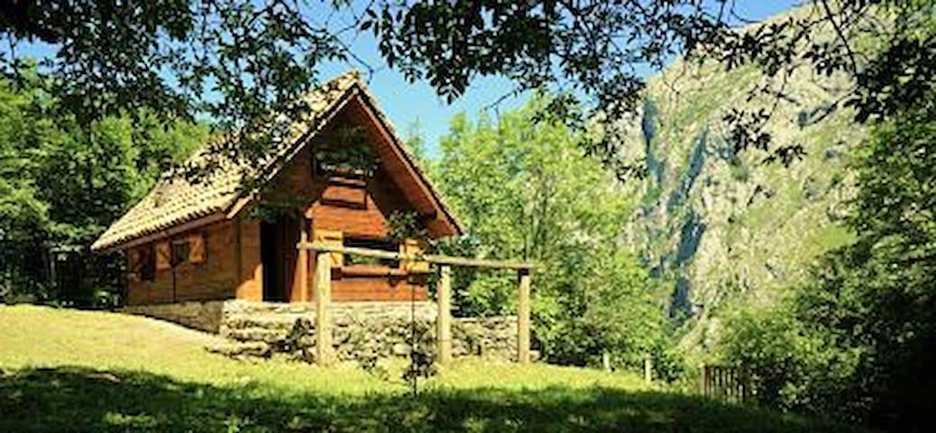 Cabaña con Encanto Cangas de Onis-Picos de Europa - Oriente de Asturias - Mökki