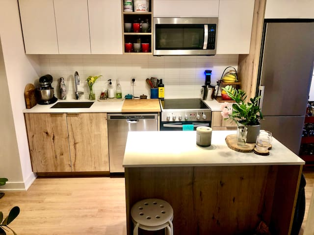 New Modern 1 Bedroom King West Condo- 1 Month