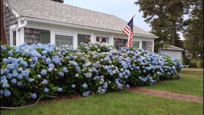 Cape Cottage with Deeded Beach and Garden Patio