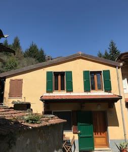 Fabio's House