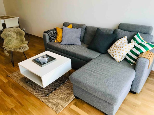 Comfortable, fully furnished apartment