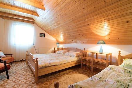 Guesthouse ŠADRVAN - Room No. 1
