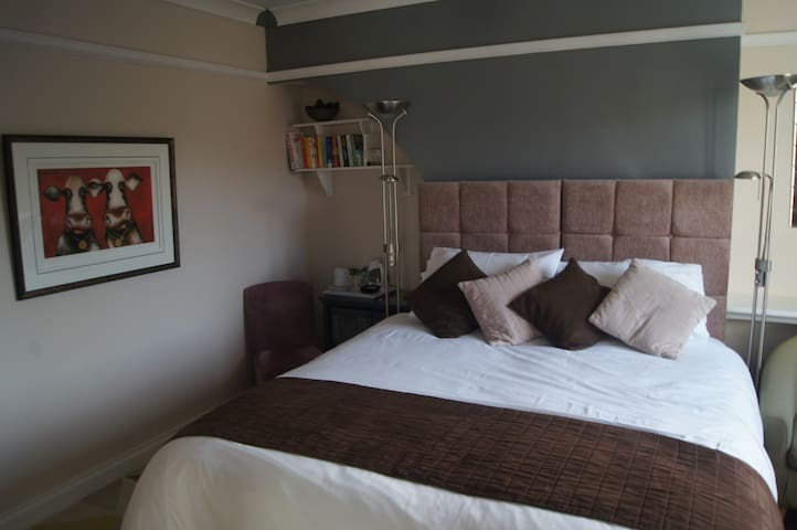 Double or Twin Room at Arfryn House