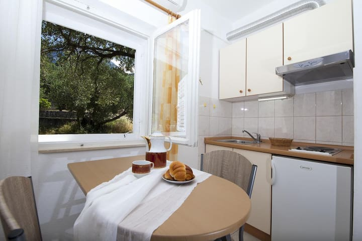 Studio flat with air-conditioning Tučepi, Makarska (AS-11486-a)