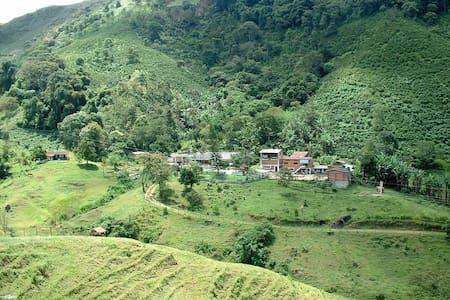 Coffee with Nature - Tarso - Villa