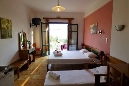 DANAE 2 STUDIOS with garden&lovely view to the sea - Wohnung