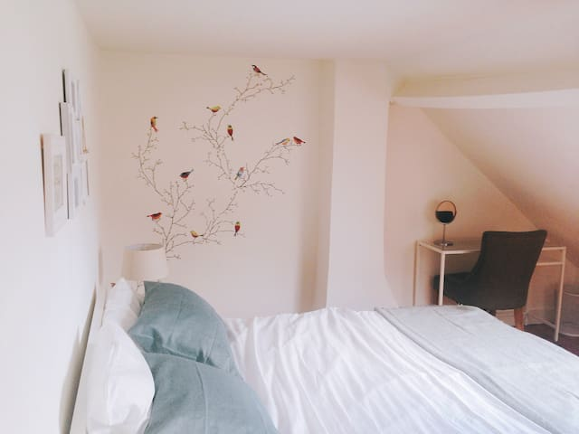 Private double room in Antwerp - Antverpy - Řadový dům
