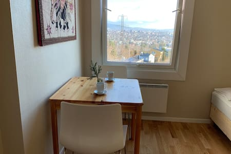 Cozy  room with beautiful view over Oslo and fjord