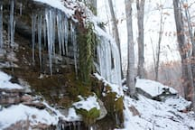 Ice cycles in the winter.  Majestic cliffs and moss and fern gardens.