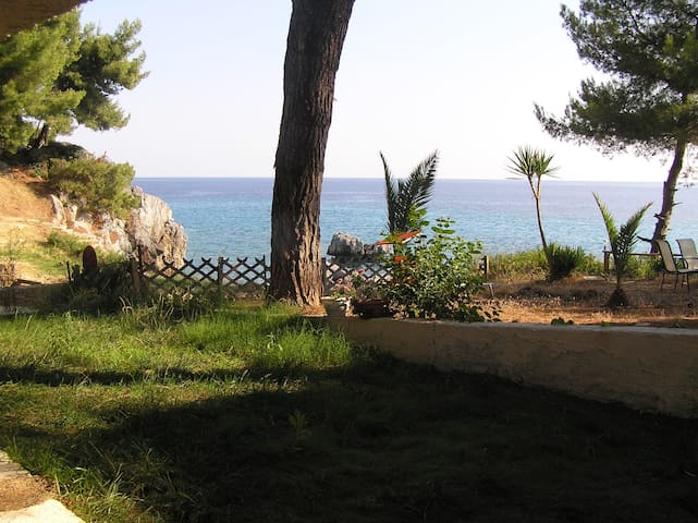 Traditional Groundfloor apartment 20m from the sea