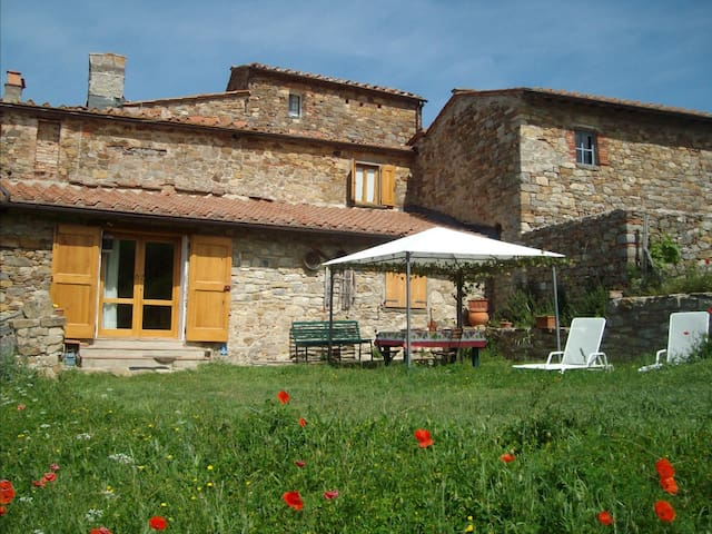 Tuscan Chianti Holiday Fonte with private lake. - Radda In Chianti - Appartement