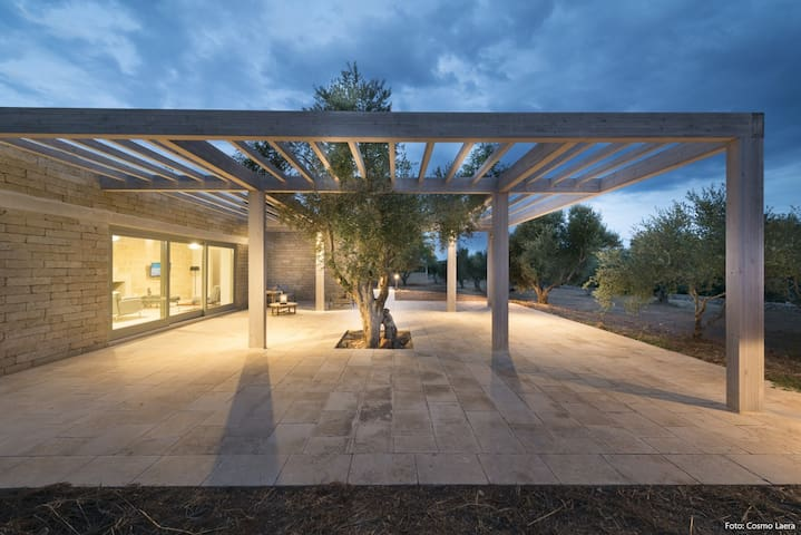 Architect design luxury villa with pool and olive grove