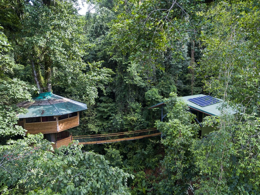 El Castillo Mastate comprises two pods - an epic master bedroom pod set 90ft up in a primary growth tree connected via suspension bridge to a contemporary pod with two additional bedrooms, a spacious kitchen/dining room, and a living area
