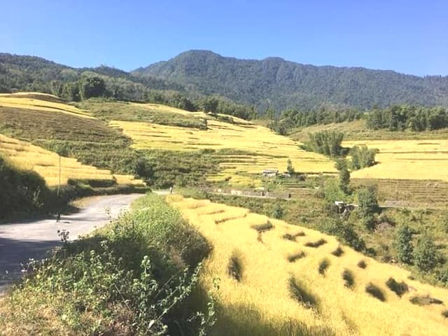 Phenzong homestay 3