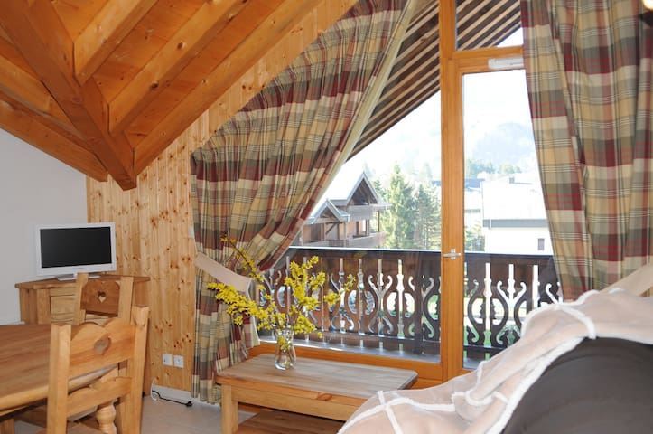 Apartement in the center with view over the Grand Massif