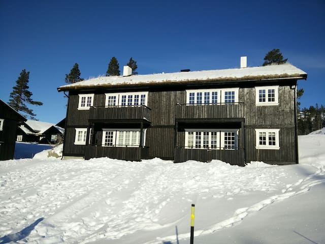 Ski in/out apartment at Gaustablikk