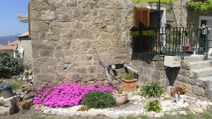 Chambre privée à Figari