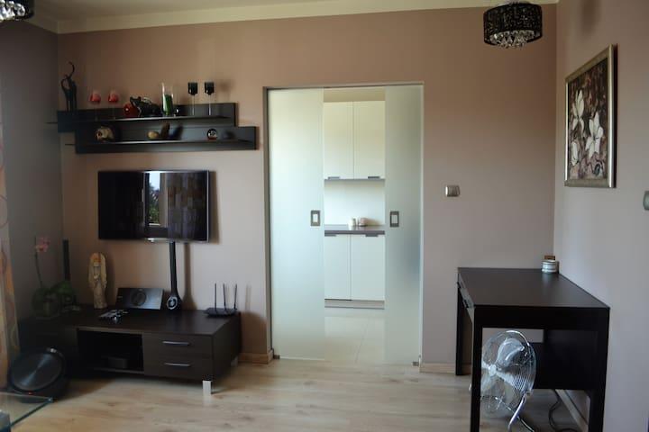 Elegant apartment in Cracow