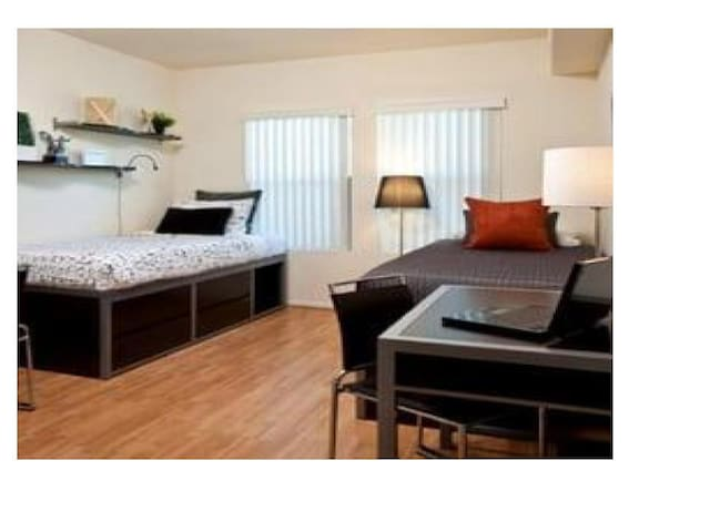 Modern Conveniences Female only setting near USC - Los Angeles - Daire