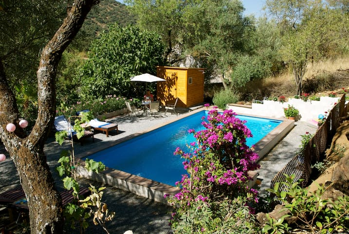 Oasis between olives halfway Cordoba en Granada - Almedinilla - Bed & Breakfast