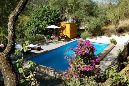 Oasis between olives halfway Cordoba en Granada