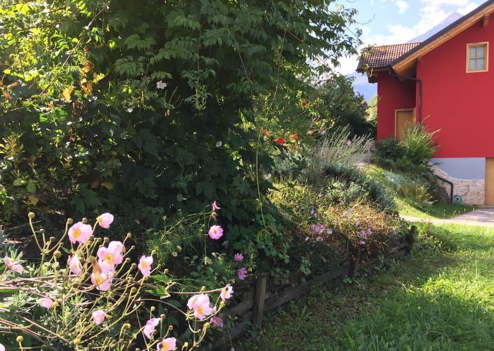 La casa rossa vista dal giardino