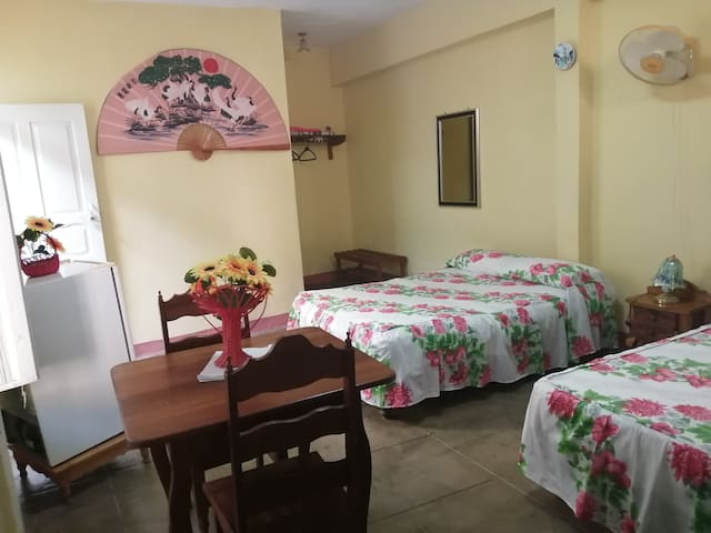 Hostal Paraiso Tropical (Hab 1)
