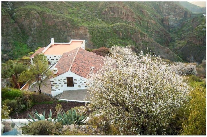 Casa Catina - Tejeda - Dom