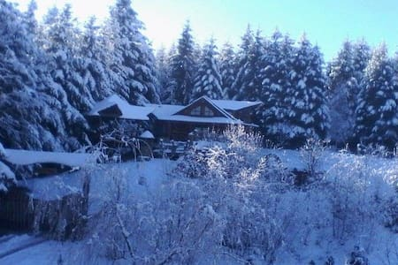 Forest House exclusive - Skhidnytsya