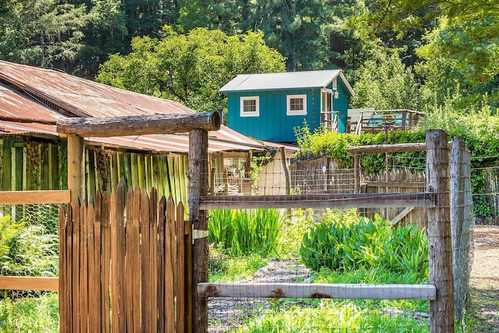 Enjoy walking the gardens at Forest View Ranch.