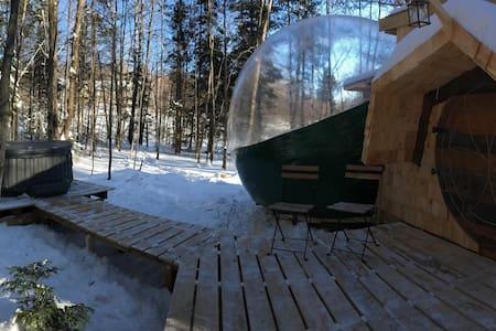 La bulle des pléiades