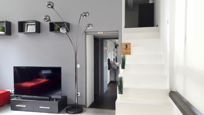 Wonderfull loft 118 m2 / 3 steps ( Parc Barbieux) - Croix
