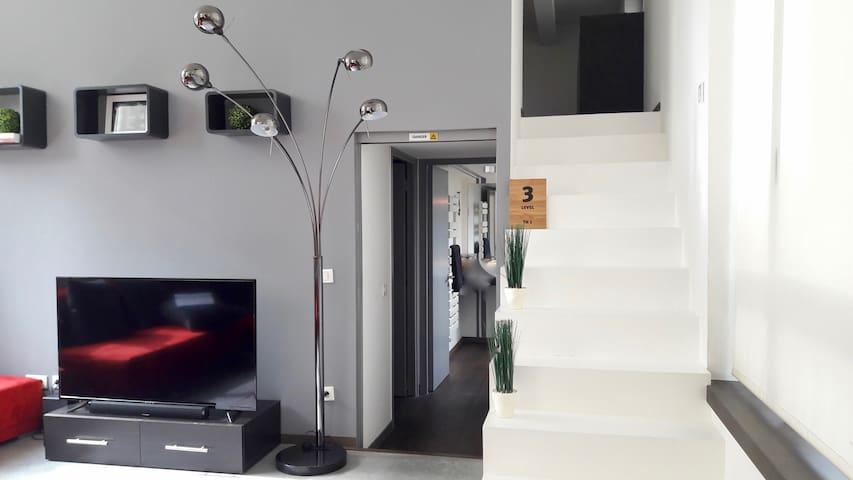 Wonderfull loft 118 m2 / 3 steps ( Parc Barbieux) - Croix
