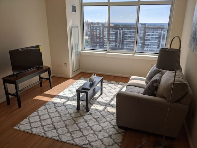 Luxury apartment downtown silver spring