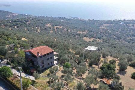 Midilliye bakan özel bir taş evde eşsiz Ege tatili