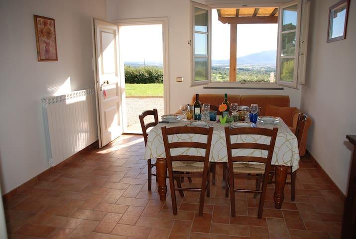 IL SOLE - APT. 4 + 2  MONTECARLO - Capannori - Wohnung