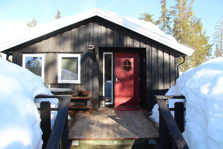 Vikerfjell 1, 5 time fra Oslo
