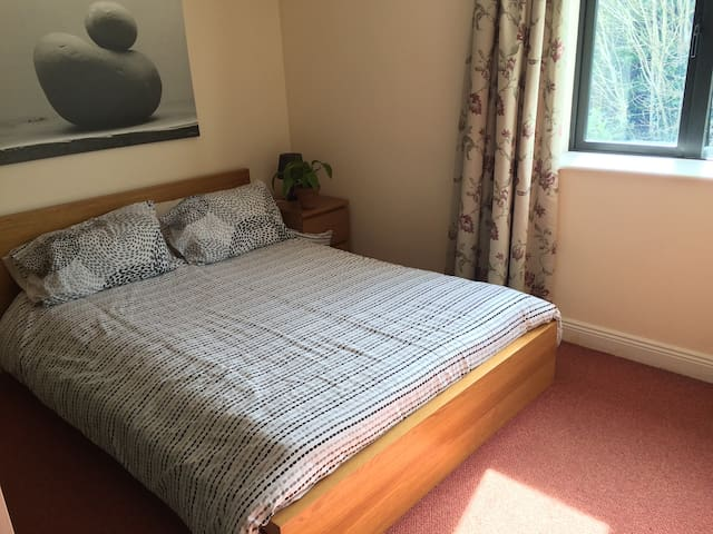 Bright ensuite double bedroom with parking. - Blarney - Flat