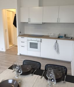 Newly renovated 1 v . Apartment for rent daily bas - Hvidovre
