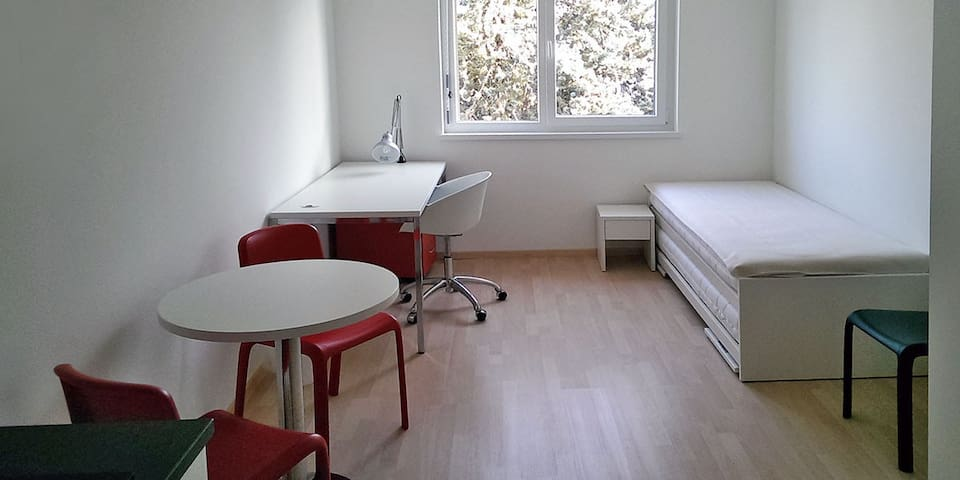 Ideally Located Studio next to EPFL & University - Echandens - Apartament
