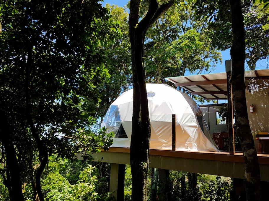 chira monteverde glamping golden toad luxury tent tentes louer monteverde puntarenas. Black Bedroom Furniture Sets. Home Design Ideas