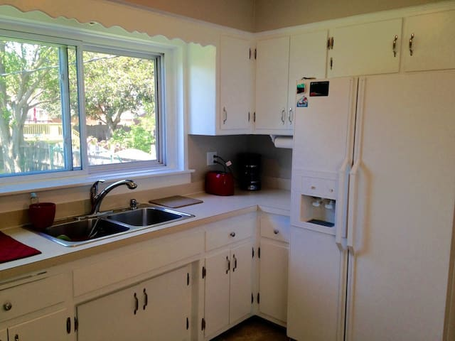 Double sink and refrigerator