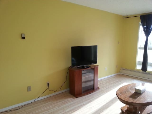 Downtown Core 1 bedroom apartment fully renolvated
